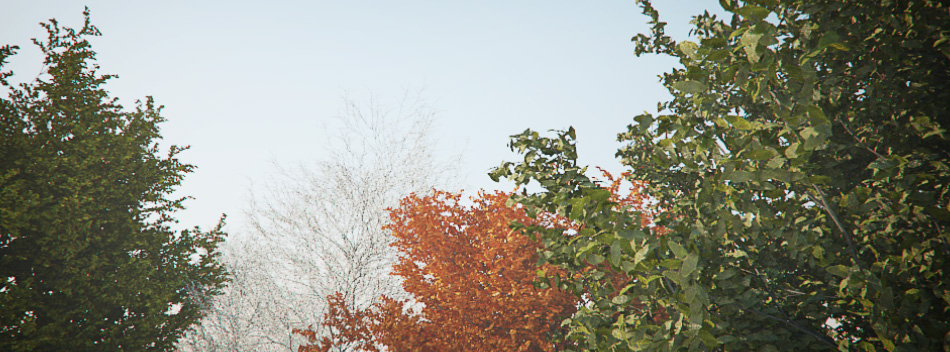 tree model + seasonal leaves
